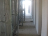 corridoio-interno-box-canile-sanitario