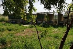 rifugio-narbolia-27-aprile-2018 (11)