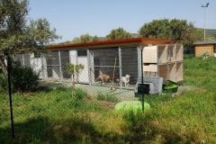 rifugio-narbolia-27-aprile-2018 (16)