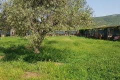 rifugio-narbolia-27-aprile-2018 (17)