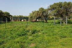rifugio-narbolia-27-aprile-2018 (19)