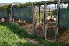 rifugio-narbolia-27-aprile-2018 (20)