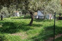 rifugio-narbolia-27-aprile-2018 (6)
